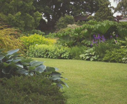 Tips voor het onderhouden van de tuin